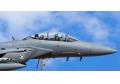 PETLAS: BIETET F-16 MILITÄR FLUGZEUGREIFEN AN